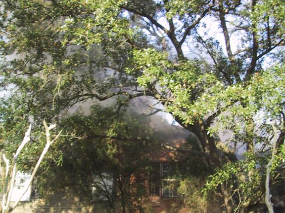 View of burning apartment through trees