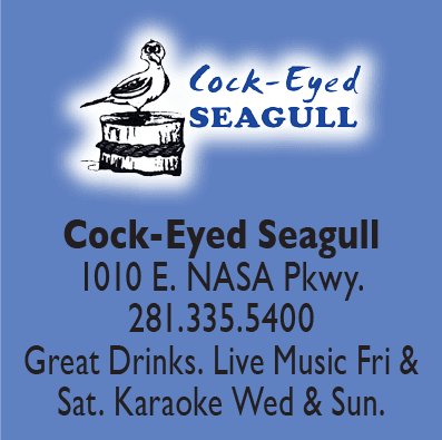Cock-eyed Seagull