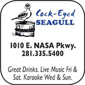 Cock-eyed Seagul